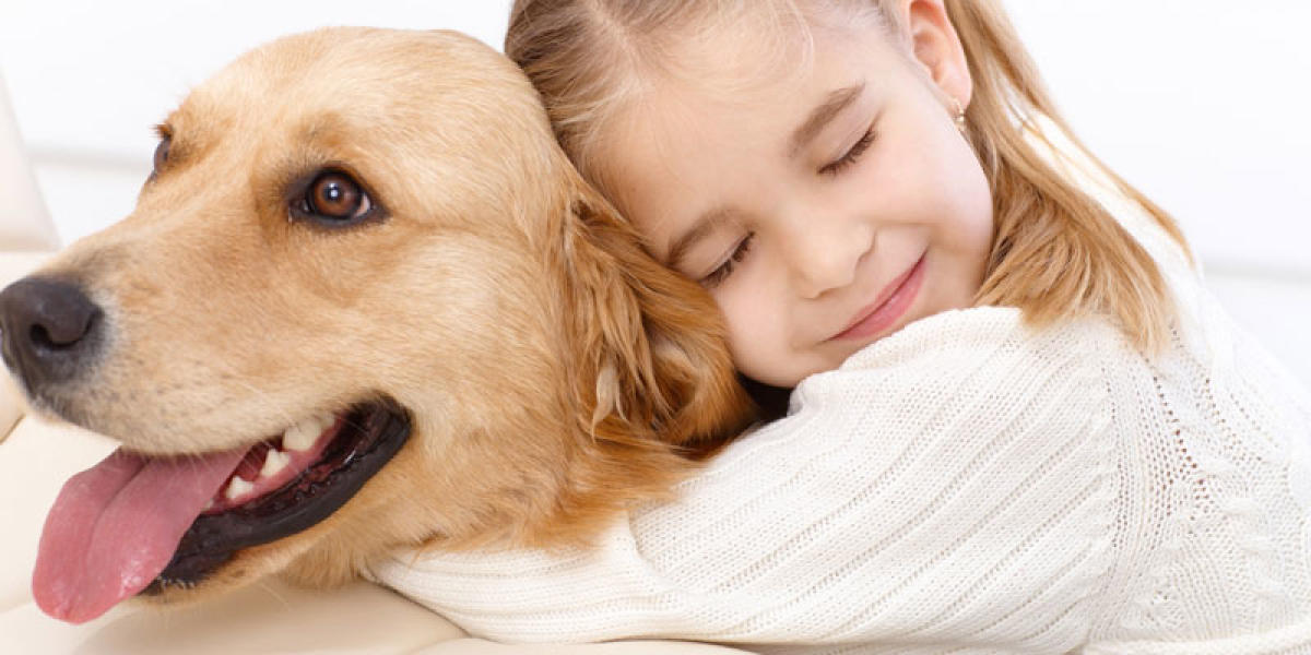 Dog ownership linked to lower risk of death: study