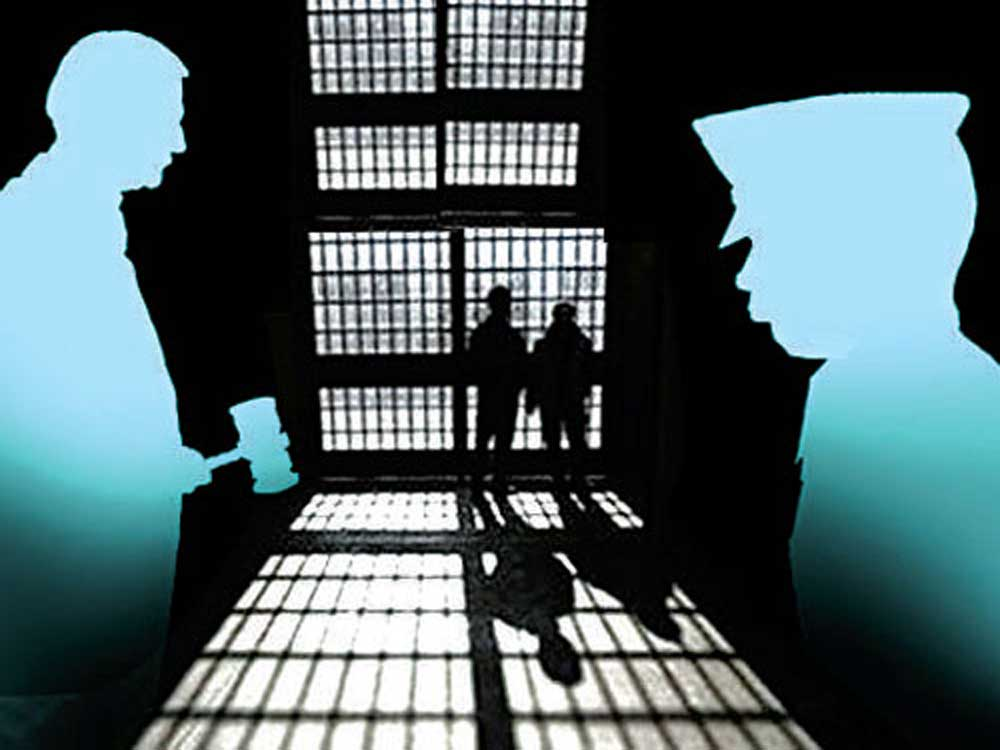 Techie jailed for raping blood relative
