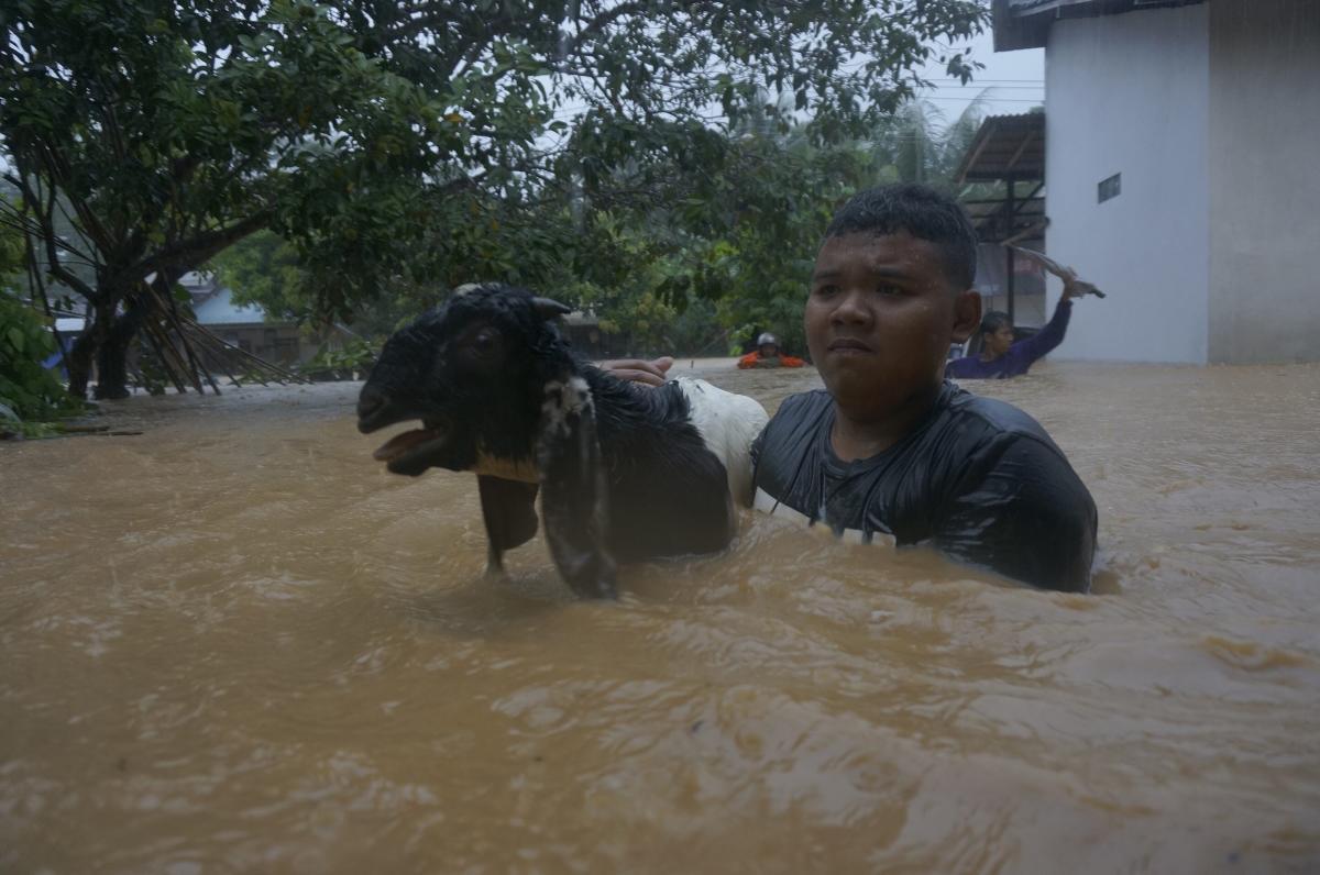 Cyclone Cempaka kills at least 19 in Indonesia