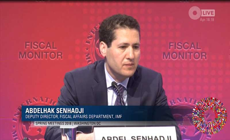 In picture: Abdel Senhadji, Deputy Director, IMF Fiscal Affairs Department. IMF screengrab.