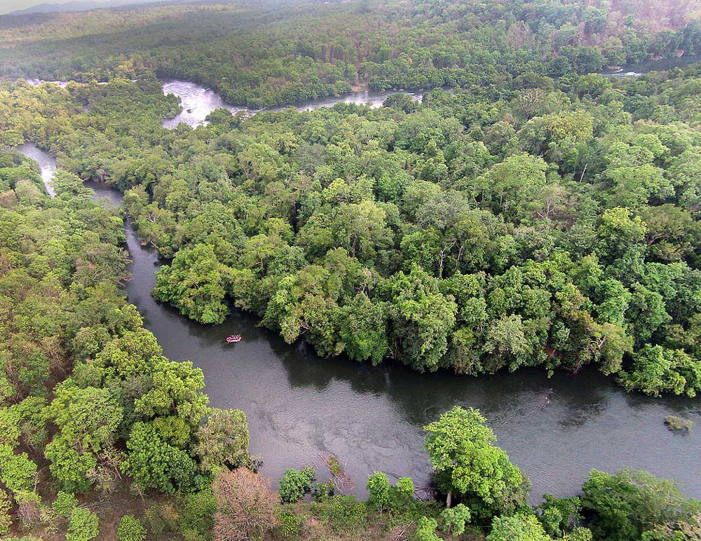 It is not only the origin of rivers but the entire ranges of forests that are the mothers of numerous streams and tributaries, which ultimately feed the major rivers.