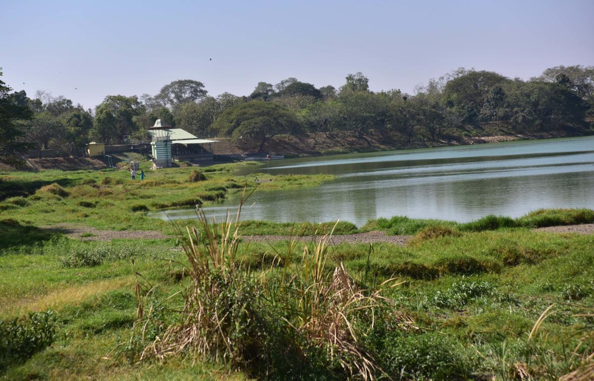 Election Commission has advised to continue with the existing tender of Kukkrahalli Lake through e-procurement portal. DH file photo