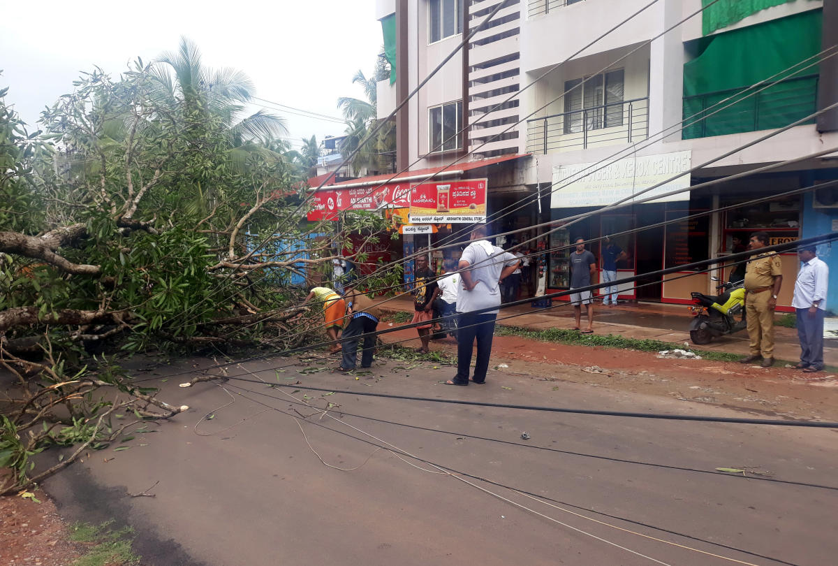 Electricity wires were damaged when a tree fell on them on the Manipal-Ishwarnagara Main Road in Udupi.