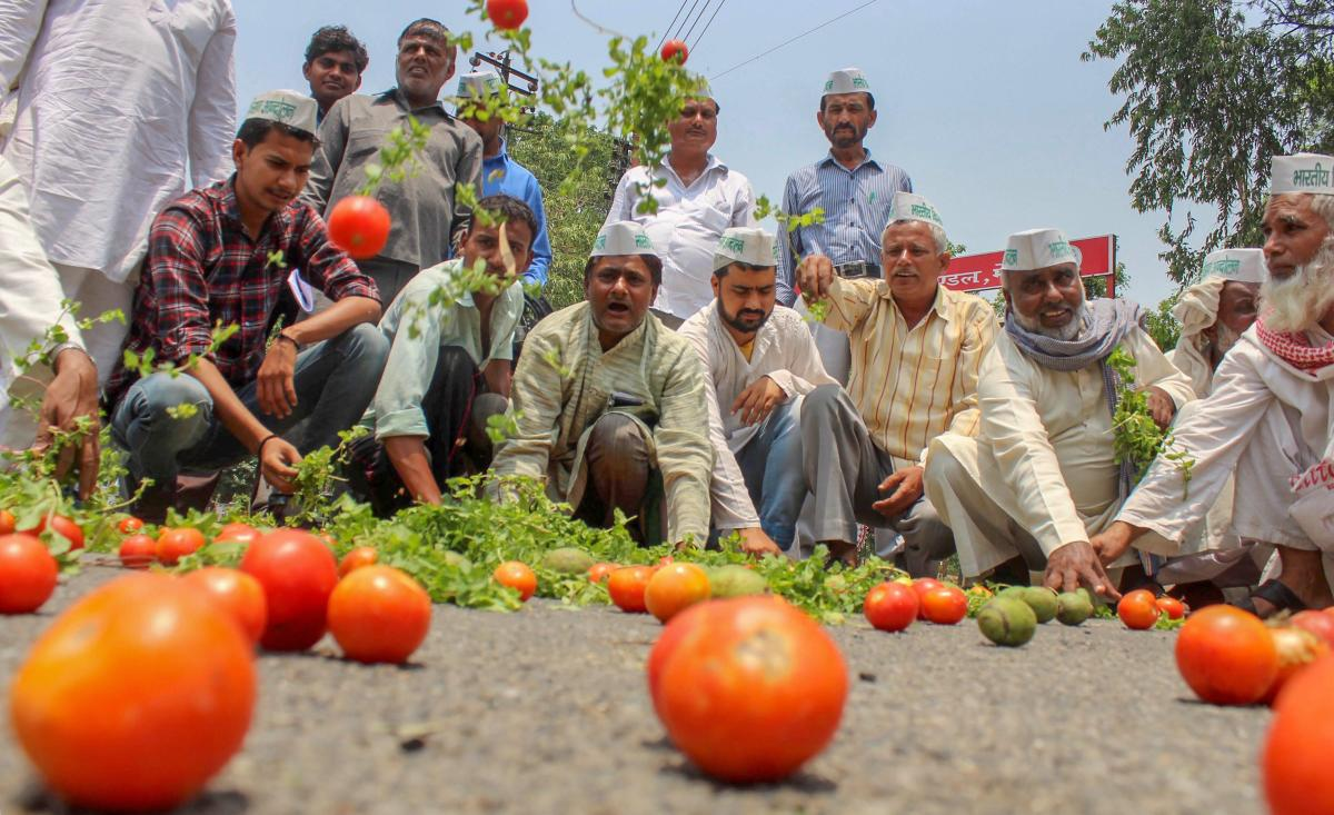 Bharatiya Kisan Andolan activists along with the farmers throw tomatoes on a road during a protest various issues of the farmers including their loan waiver, in Meerut on Sunday. PTI Photo
