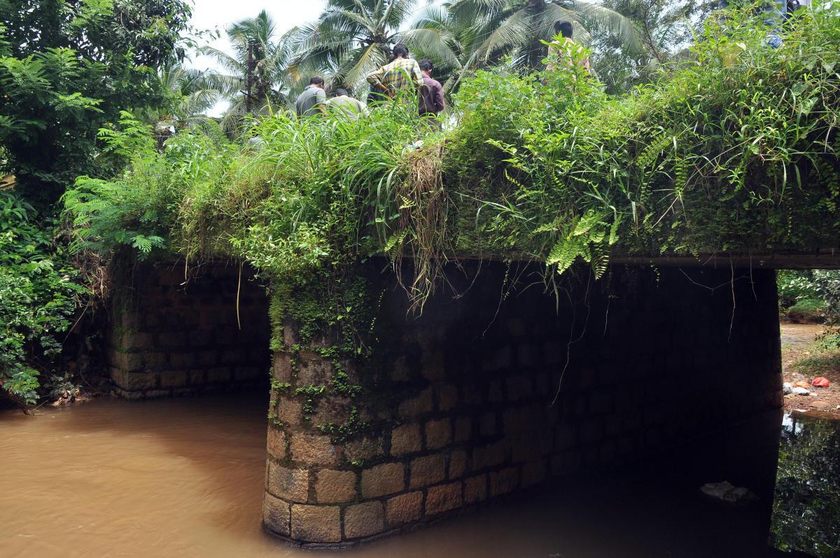 A view of the Kalkatta-Manjanady bridge.