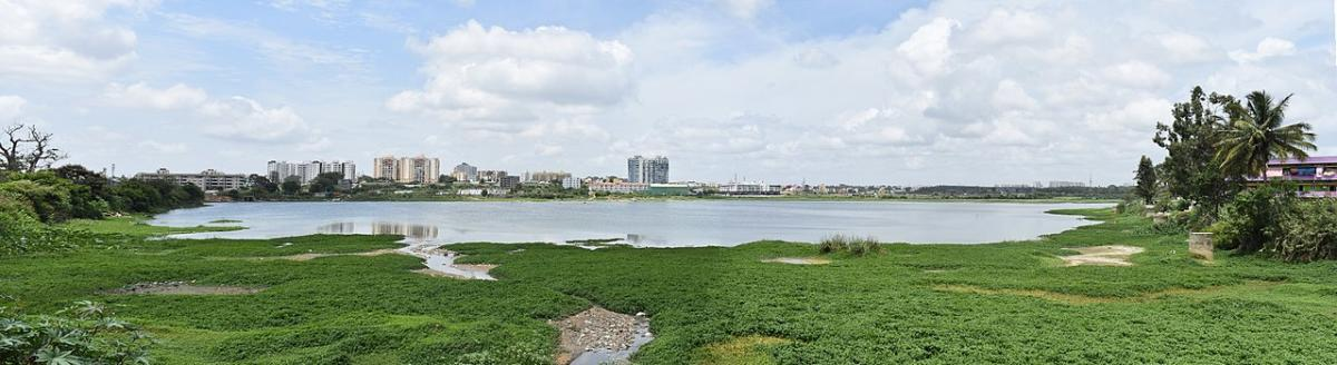 The BBMP has approved to install one of the tallest statues of Lord Shiva on the Begur lake.