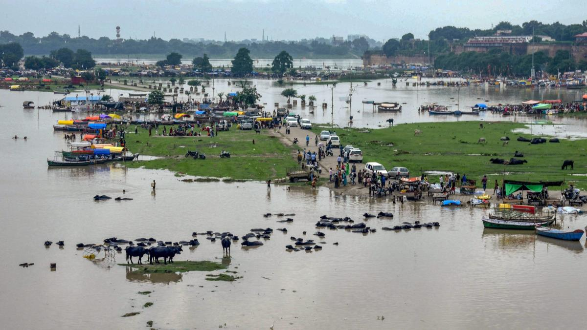 The Ganga river is flowing above the danger mark at Farrukhabad, while the Ghaghra riveris flowing above the danger mark in Gonda, Barabanki and Baharaich districts.