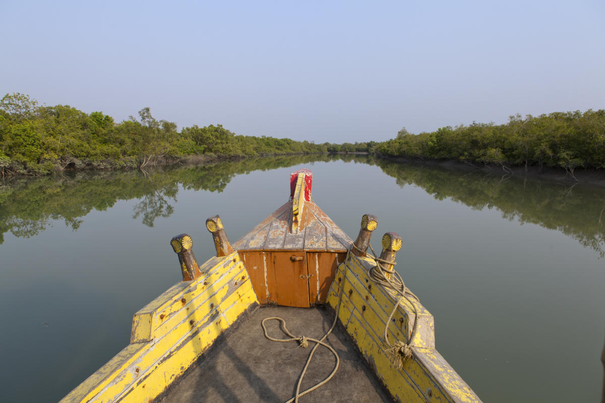 Cruising through the Sunderbans