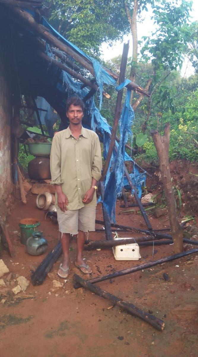 The elephants damaged a portion of a house belonging to Suresh at Kogile in Mudigere taluk.