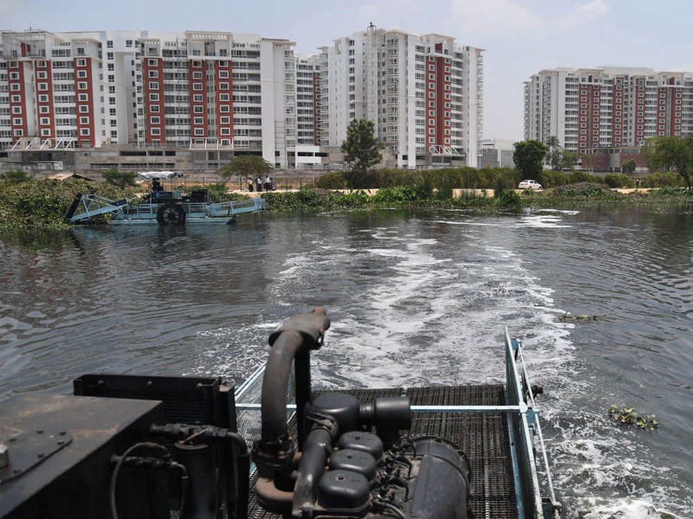 The stormwater drain into which the raw sewage was discharged leads into Bellandur Lake, which is already polluted. (DH File Photo)