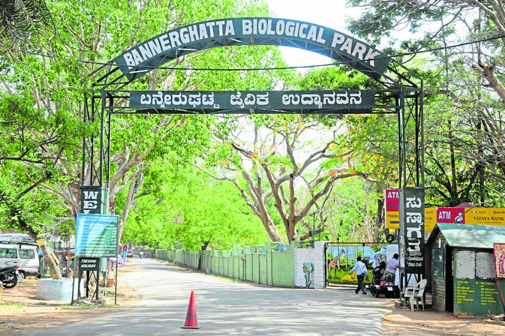 M F Saldanha insisted that court should take a suo motu complaint against the illegal mining in and around Bannerghatta National Park.