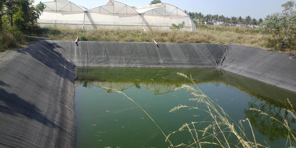 Farm pond dug to collect and store rainwater by farmer Nagarajappa in Devarahalli in Kadur taluk.