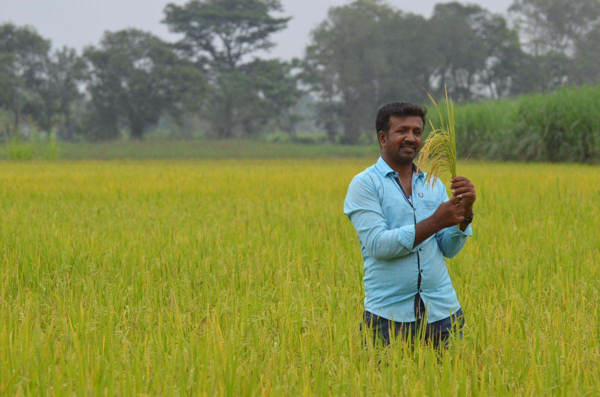 Sidda Sanna Rice Seed Producer Hemanth Photo- Krishna Prasad