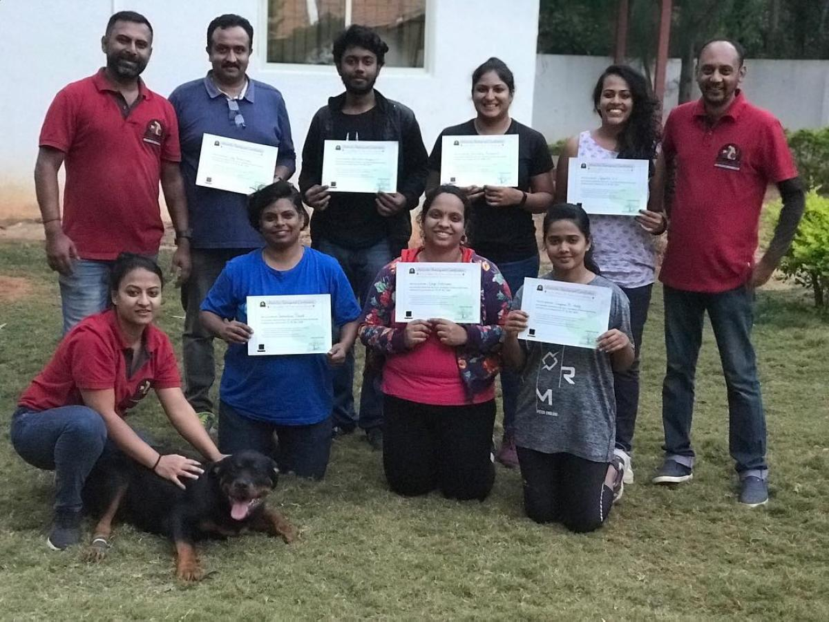 Anvis Inc in Ganganagar offers a certifcation course for those who want to become professional dog walkers. Dog walkers' fees begin at Rs 150 a session.