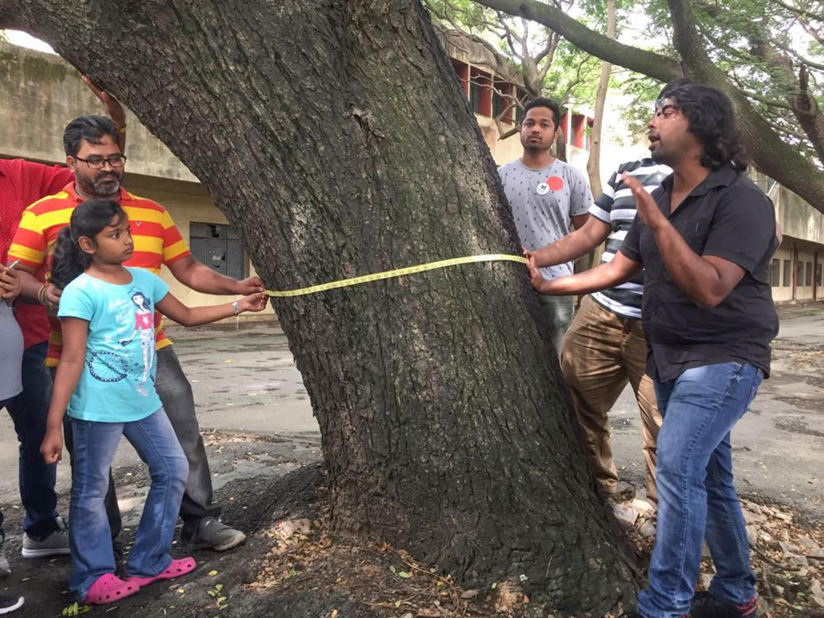 The residents of Indiranagar will conduct tree census in the area during weekends, beginning from December 2. File photo