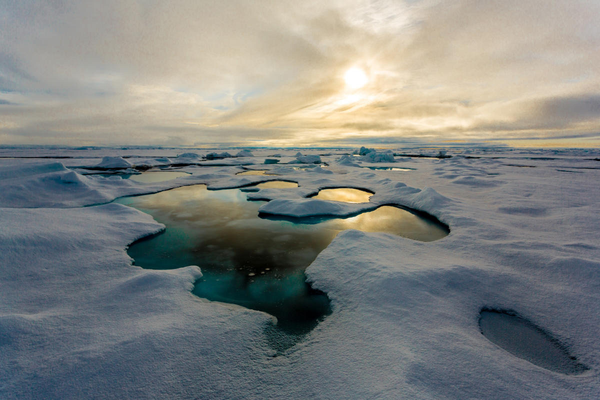 AFP file photo of ponds on the Arctic sea ice.