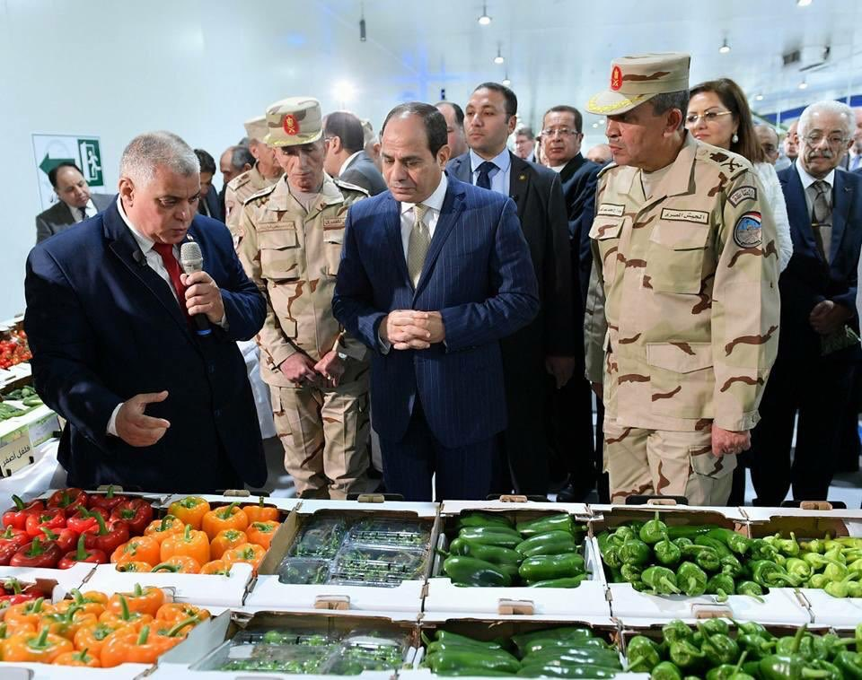 President Abdel-Fattah el-Sissi during National Agricultural Project inauguration on Sunday. (Twitter/@AlsisiOfficial)
