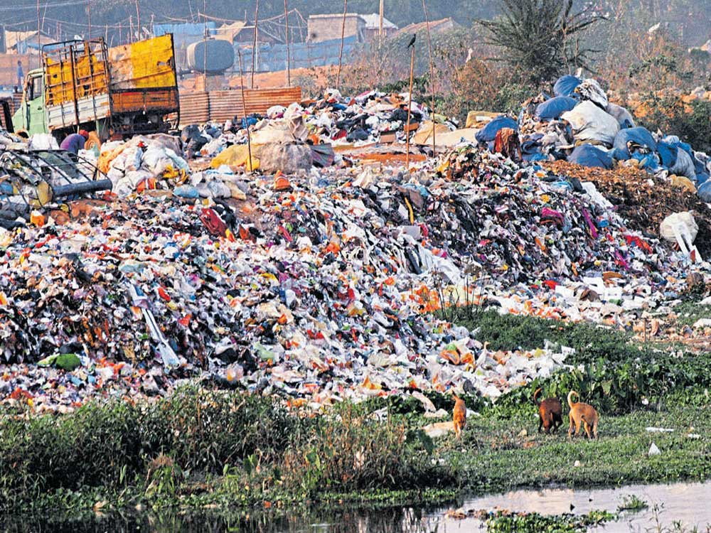 Truckloads of debris and garbage were found dumped into the lakebed, creating a health hazard for thousands of office-goers who use the road that runs along it. File photo/ representation purpose only