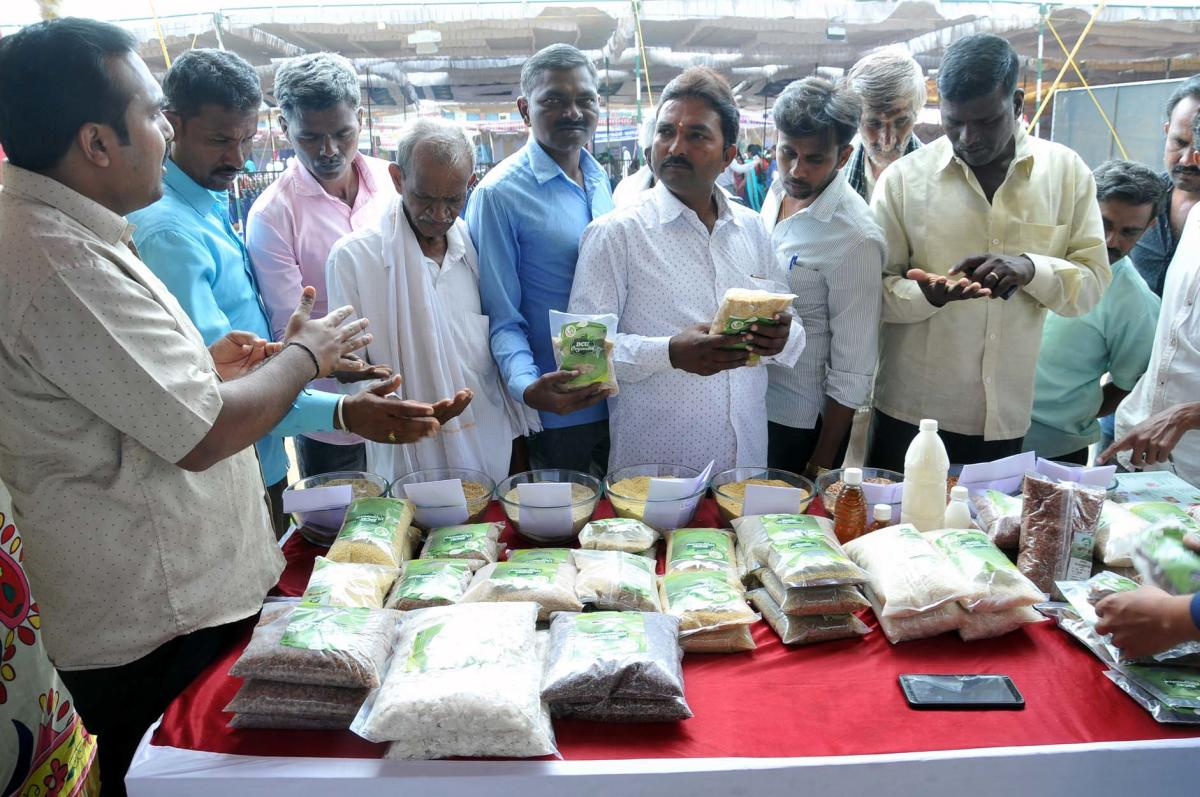 Farmers collect information on millets at the organics and millets fair in Chikkamagaluru.