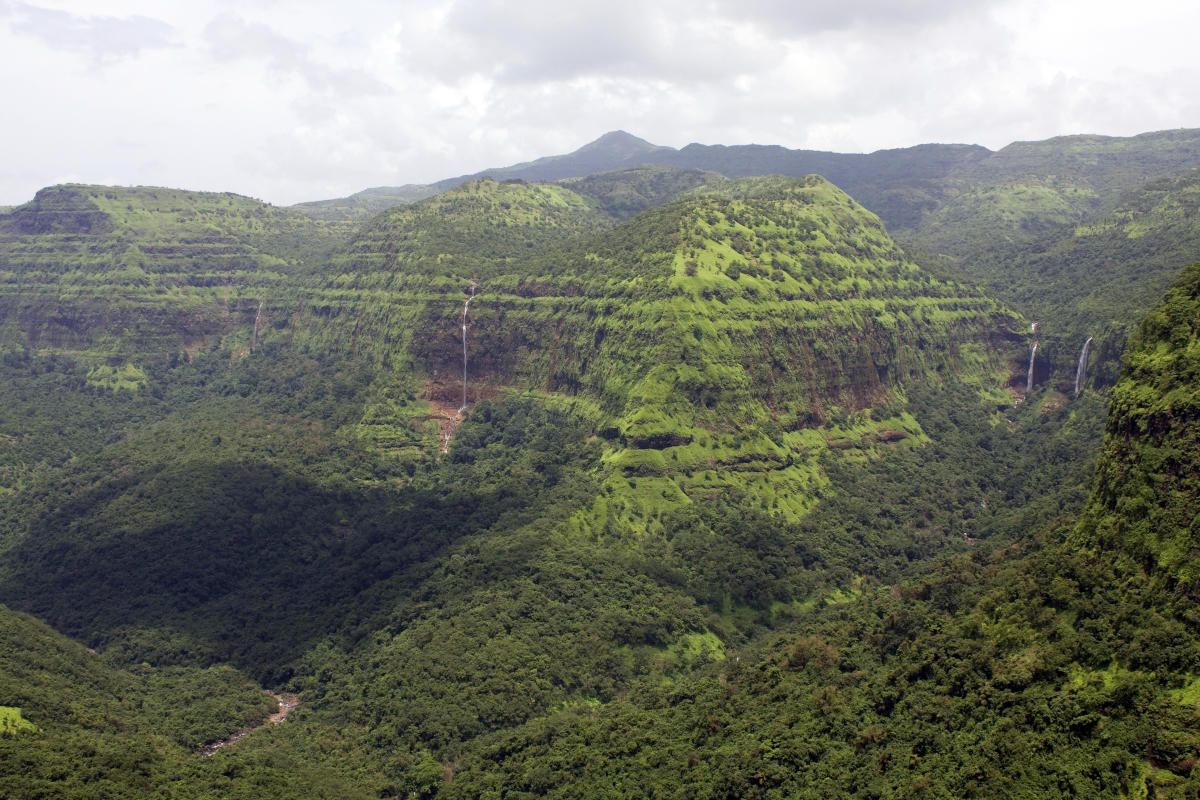 Much needed interventions to conserve the Western Ghats, recommended by both the Gadgil and Kasturirangan committees, have been let down by both state and Union governments.