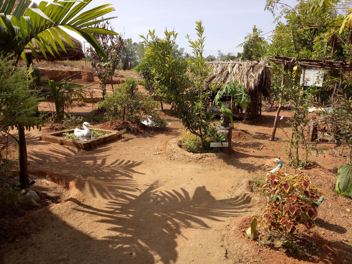 The plants, small ponds with a model of a duck, at the Anganwadi premises in Manavalike, at Perabe in Puttur taluk.