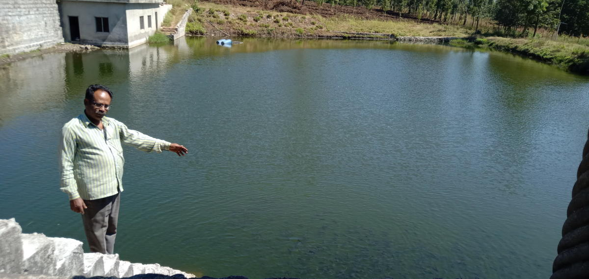 The pond constructed by farmer M T Baby on his land at Arasinaguppe in Somwarpet taluk in Kodagu district.