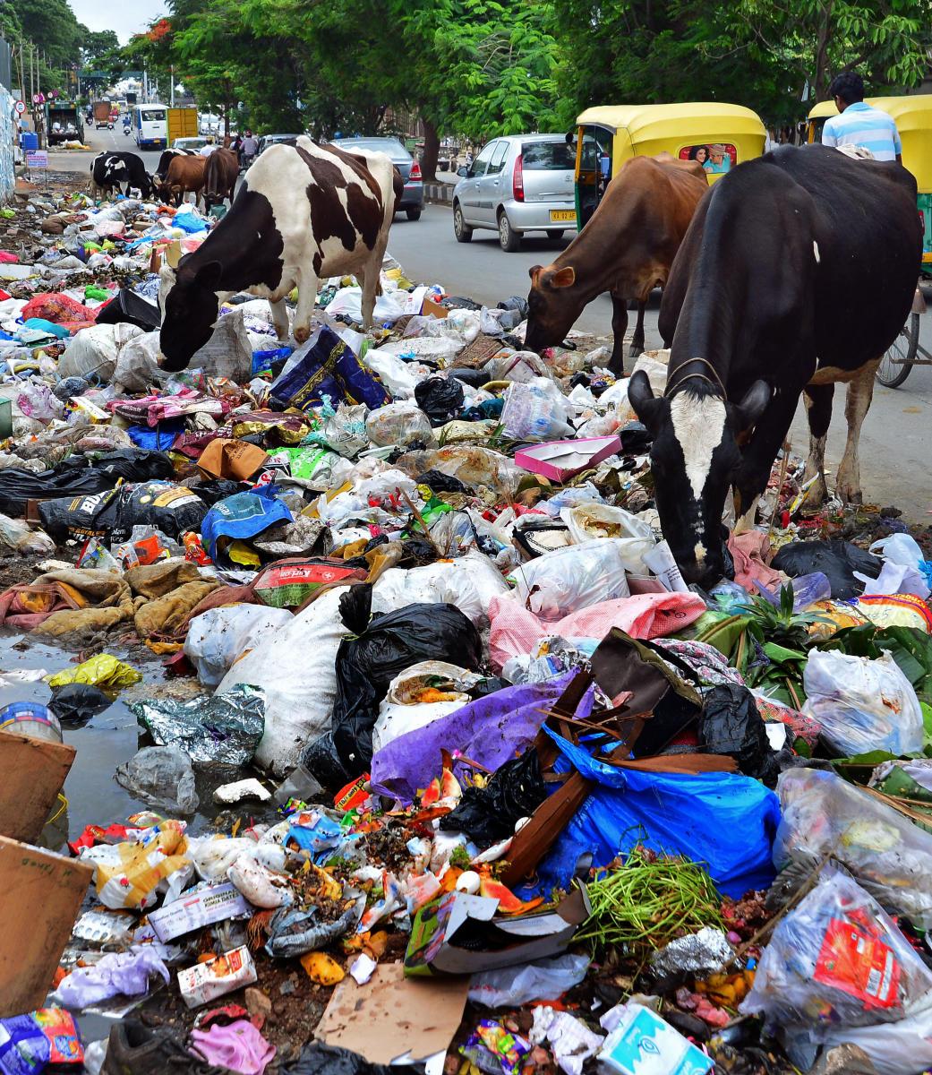 A garbage pile on the ORR near Kumaraswamy Layout. (DH File Photo)