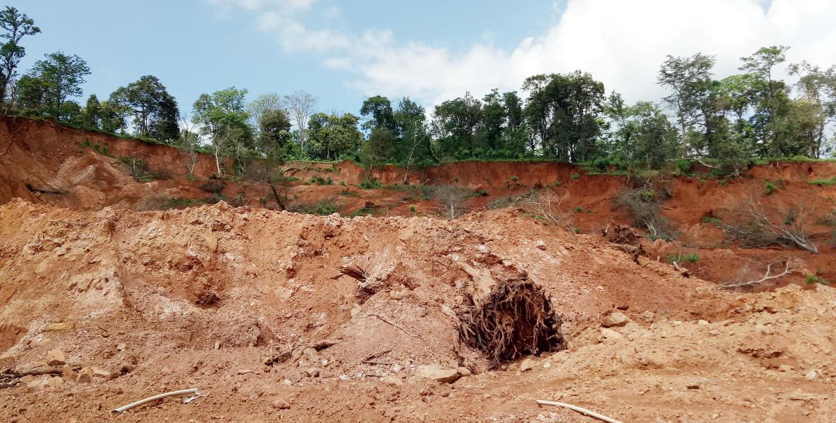 A coffee plantation near Hattihole in Somwarpet taluk is buried under the debris, following landslides.