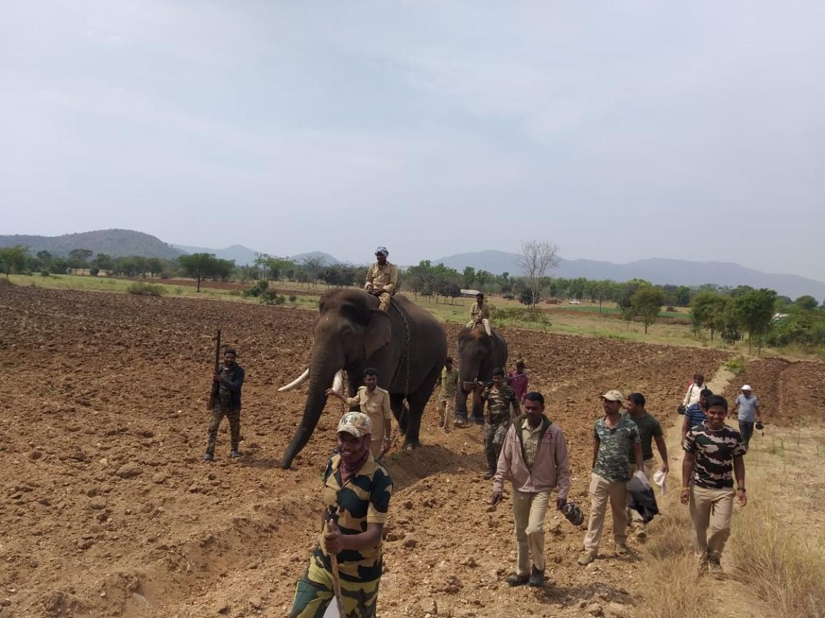 A combing operation at Maguvanahalli and surrounding villages, in Gundlupet taluk, Chamarajanagar district.