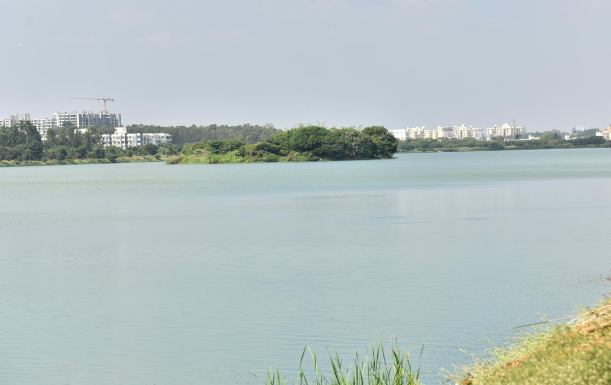 People living close to Jakkur Lake have complained that a private builder is constructing a building in the lake's buffer zone, prompting Mayor Gangambike Mallikarjun to inspect the waterbody on Thursday.