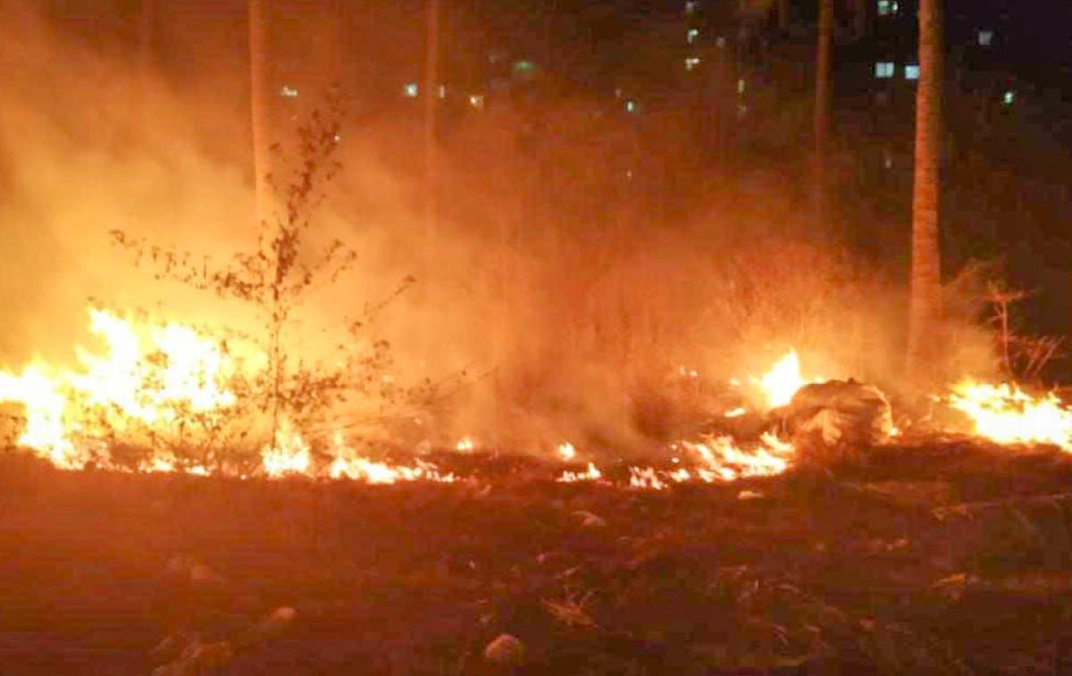 Fire in Bellandur lake buffer zone, in Suncity Shobha department side, Lake Marshals are control the fire.