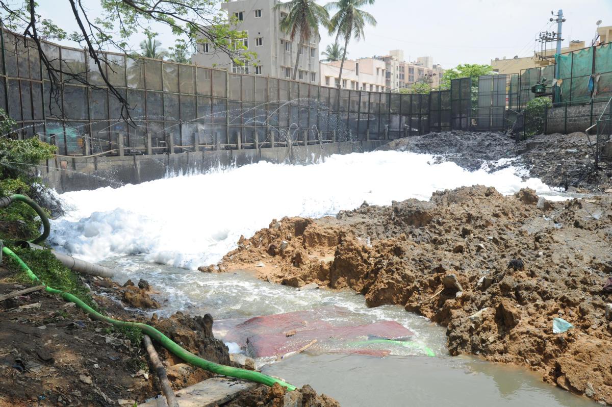 kicker: Bellandur Lake has 6.60 million cubic metres of silt, according to an IISc study. DH FILE PHOTO