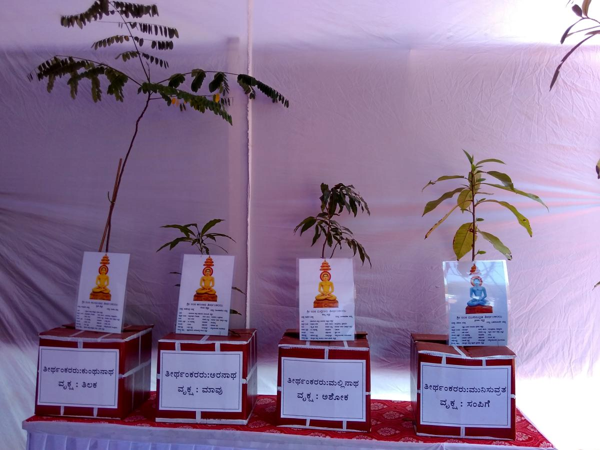 A view of the saplings of the trees under which Theerthankaras attained Moksha.