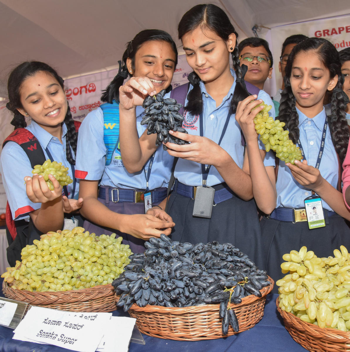 Schoolgirls at the grape, watermelon and rare fruit mela at Lalbagh in February 2018. DH FILE PHOTOS