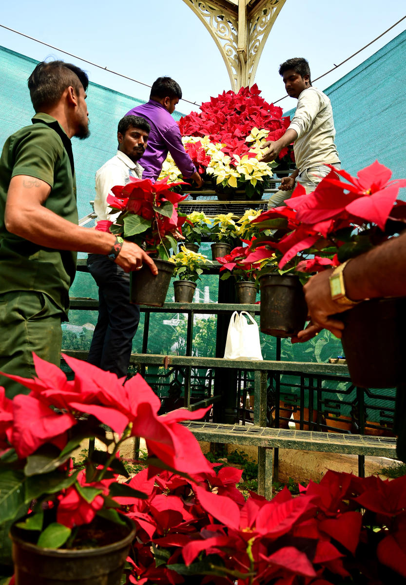 Workers arrange flower pots at Lalbagh for the Republic Day flower show which begins on Thursday. (Right) Gandhi's Three Monkeys will be among the main attractions. DH PHOTOS/KRISHNAKUMAR P S