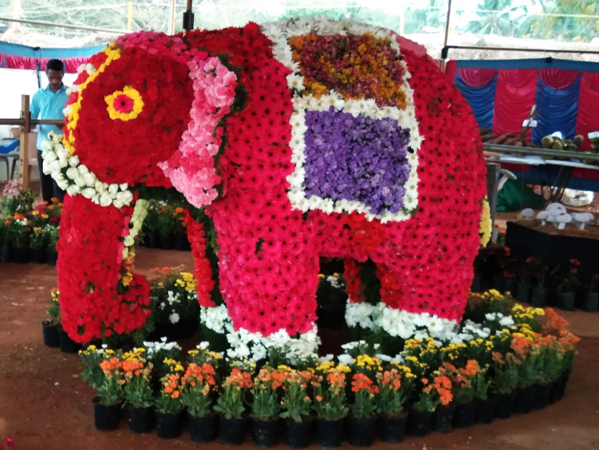 A model of an elephant, made of flowers, on display during the flower show held as a part of Alupotsav at Barkur in Udupi.