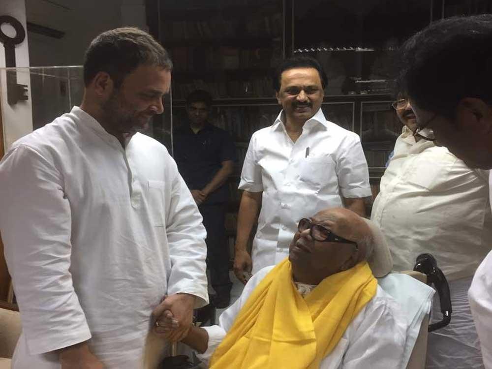 Rahul meets Karunanidhi