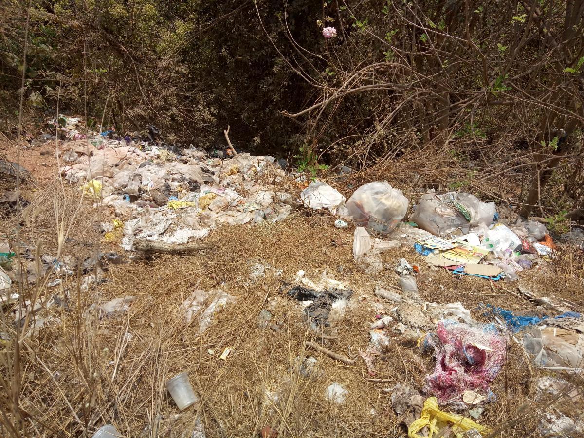Waste dumped beside a road at Thiplepadavu in Manjanady Gram Panchayat jurisdiction.