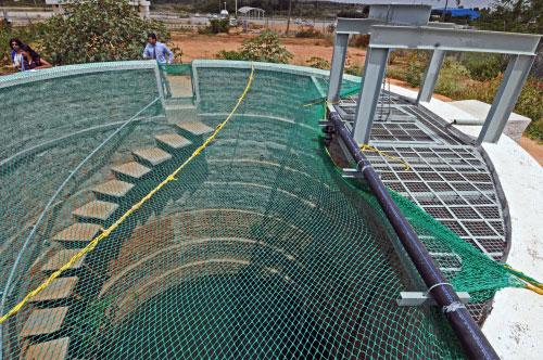 BIAL opposes reopening of Mavallipura landfill