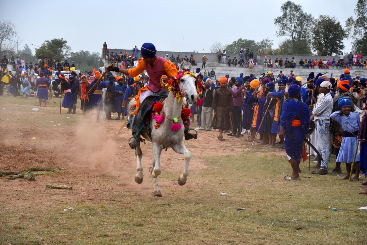 Tent-pegging. Photos by author