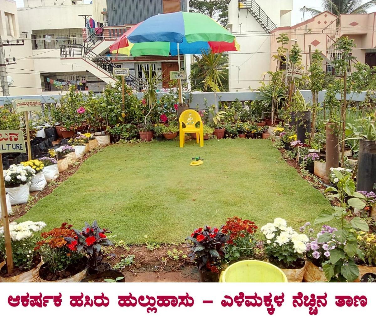 In Mysuru Terrace Garden Of A Rare Kind Deccan Herald