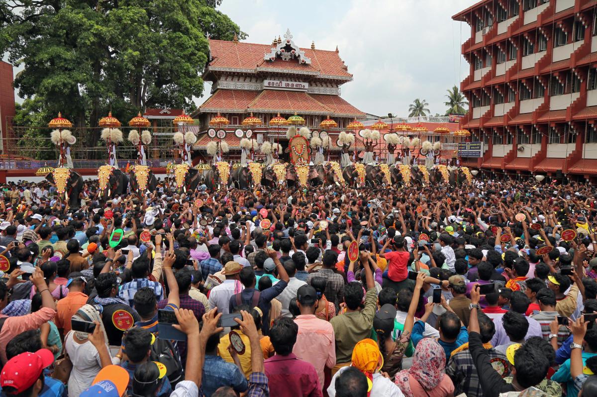 Temple elephants: follow court ruling