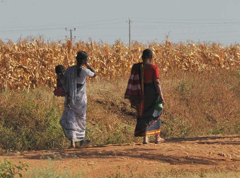 Thrash those defecating in open, says UP bureaucrat