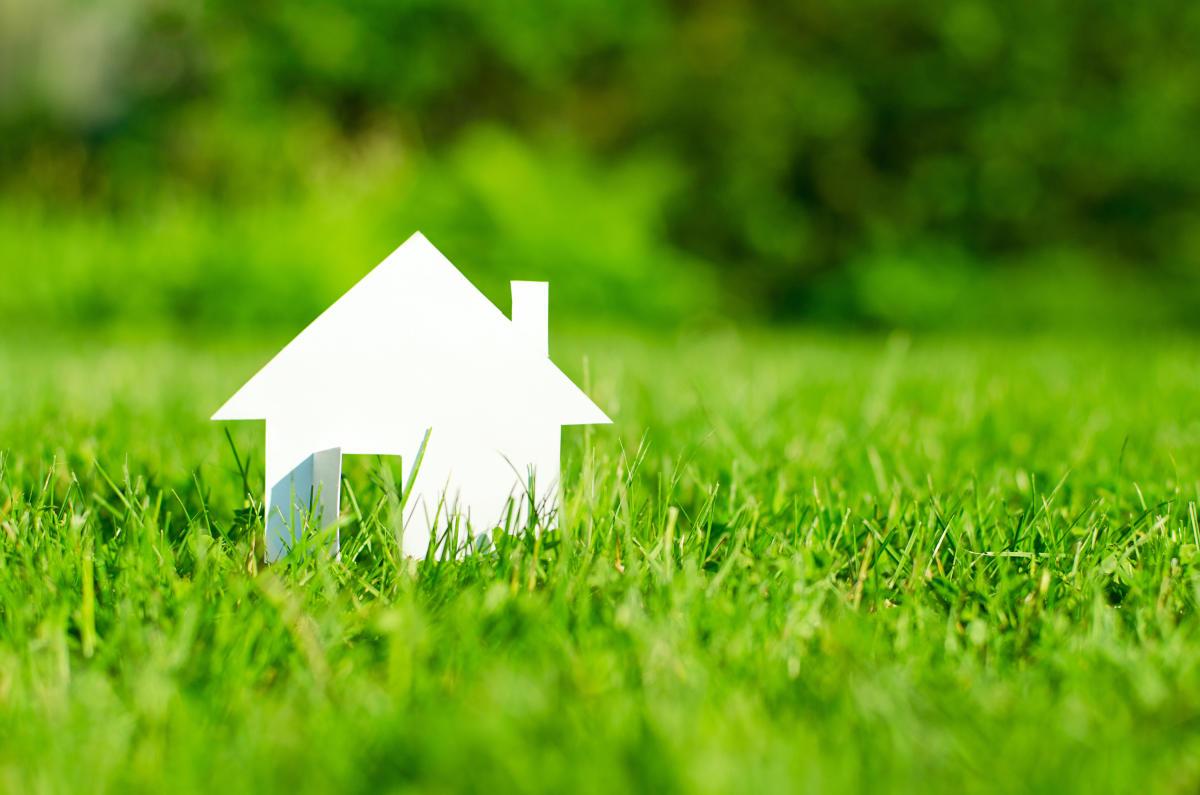 House in green fieldgreen