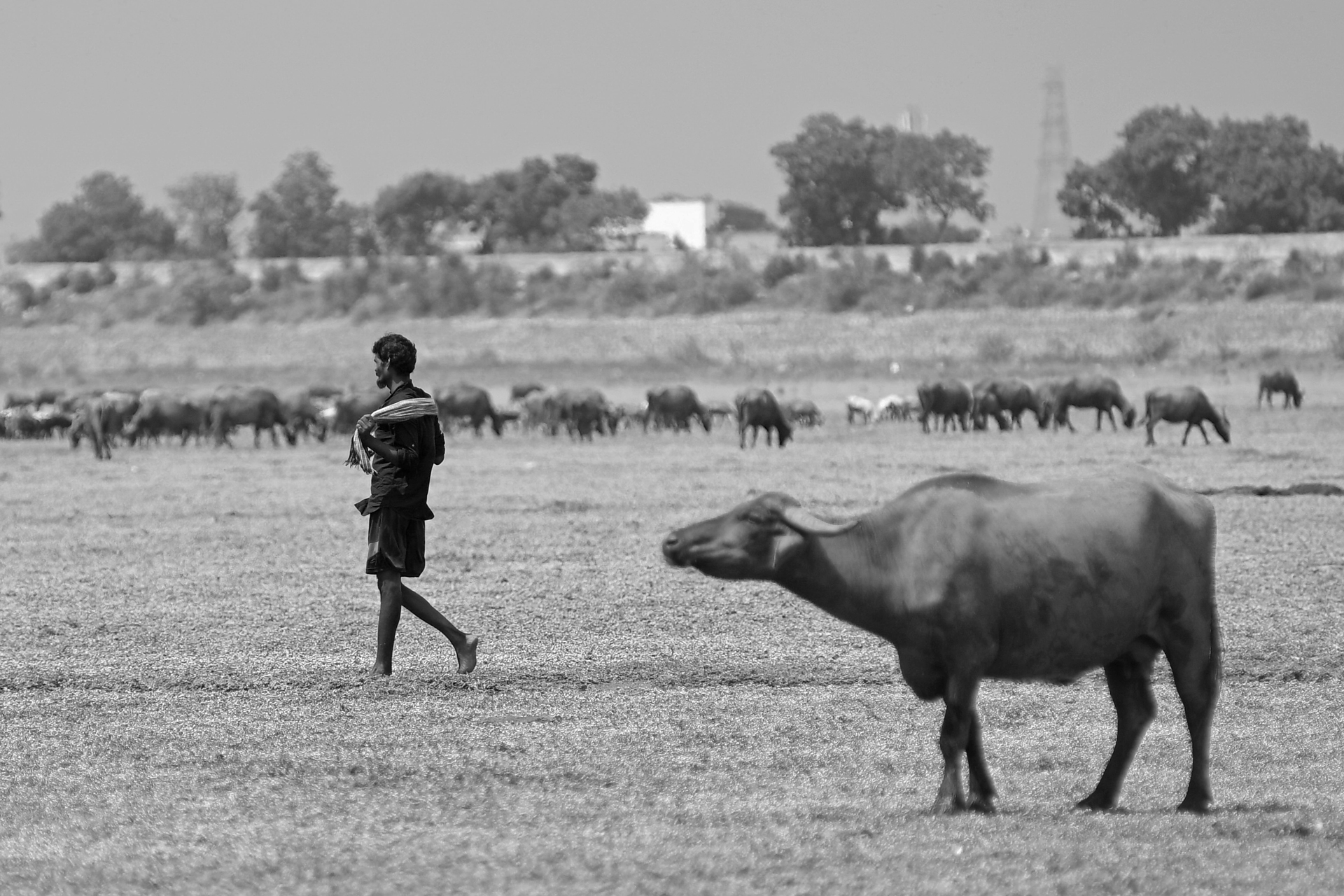 When the taps run dry: Chennai's water crisis | Deccan Herald