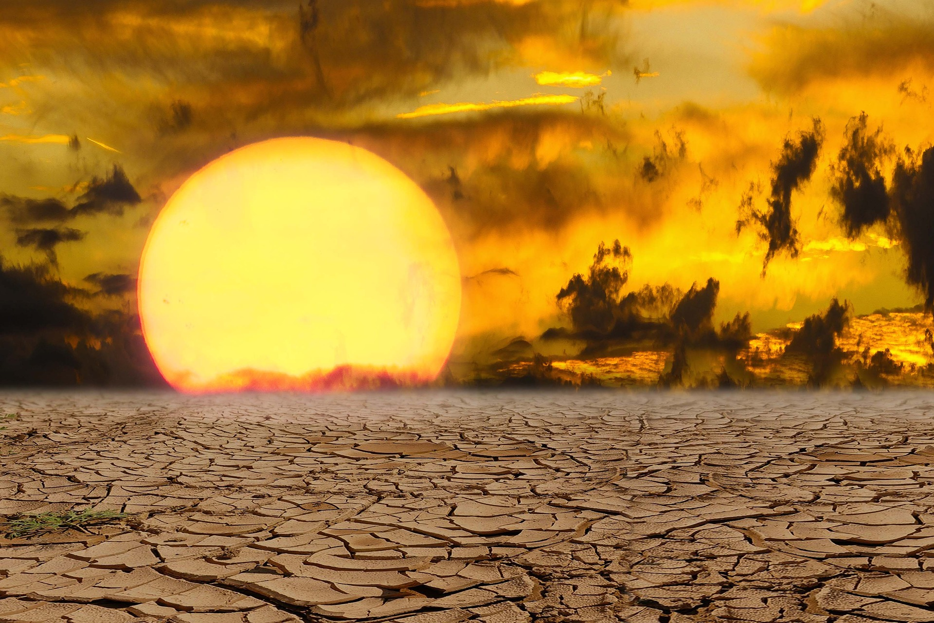 Pak fifth most vulnerable to climate change: Study | Deccan Herald