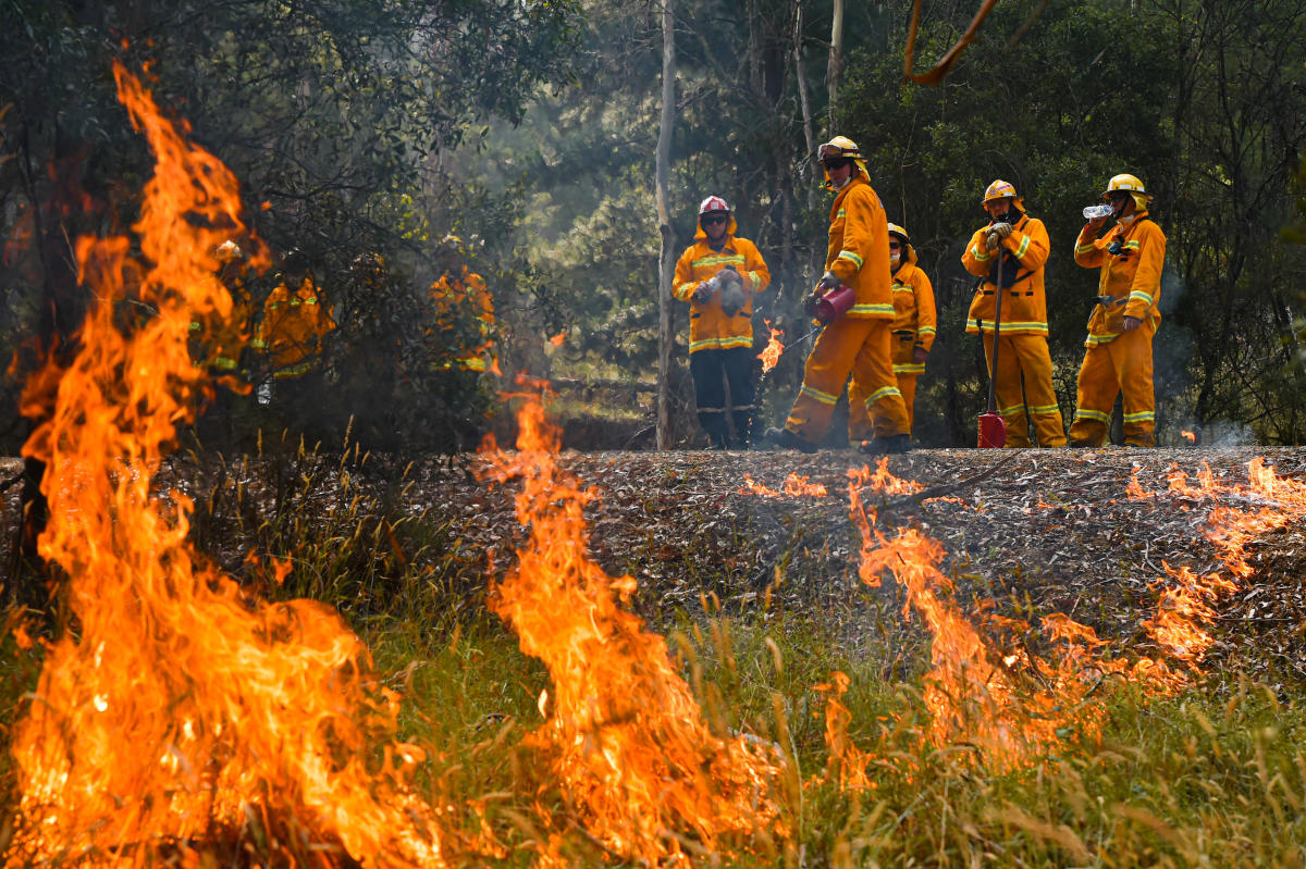 Will Bushfires Affect Australian Open Tennis Deccan Herald