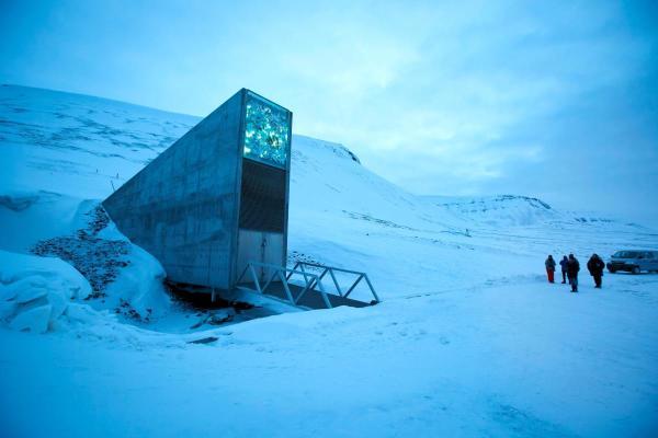 Arctic Doomsday Vault Stocks Up On 60 000 More Food Seeds