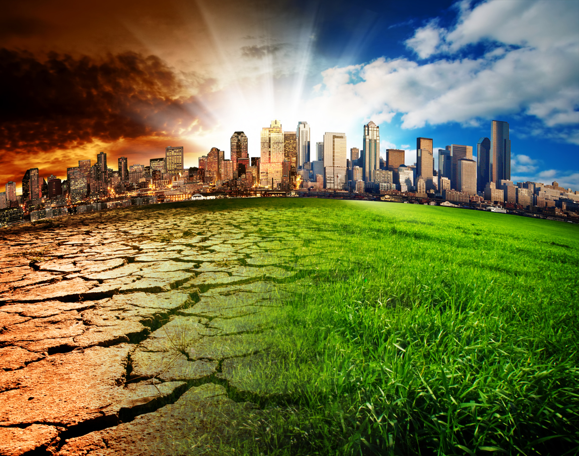 Global warming to cause 'catastrophic' species loss: study - Deccan Herald