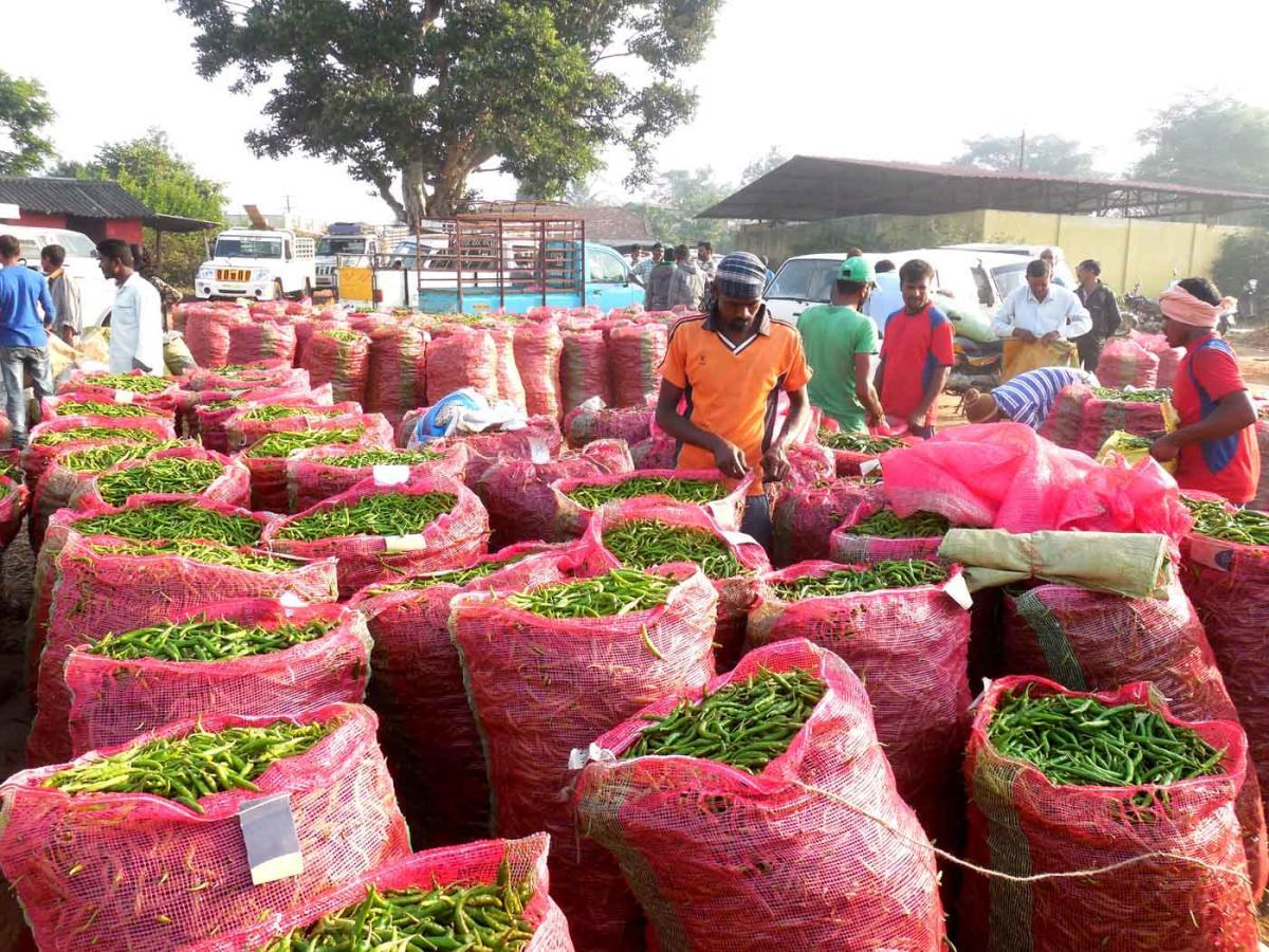 A view of green chilly market at Shanivarasanthe.